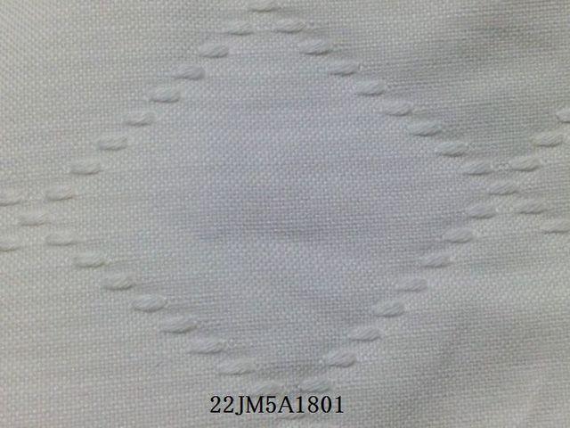 生地拡大2.jpg